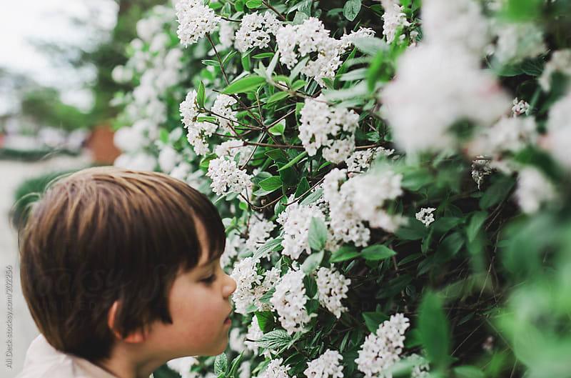 Boy Smells Flowers by Ali Deck for Stocksy United