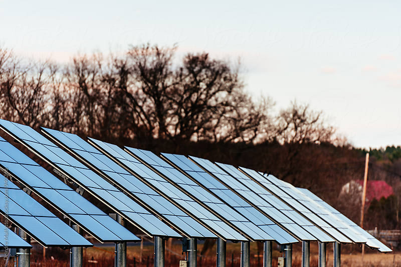 freestanding solar panels on a farm by Deirdre Malfatto for Stocksy United