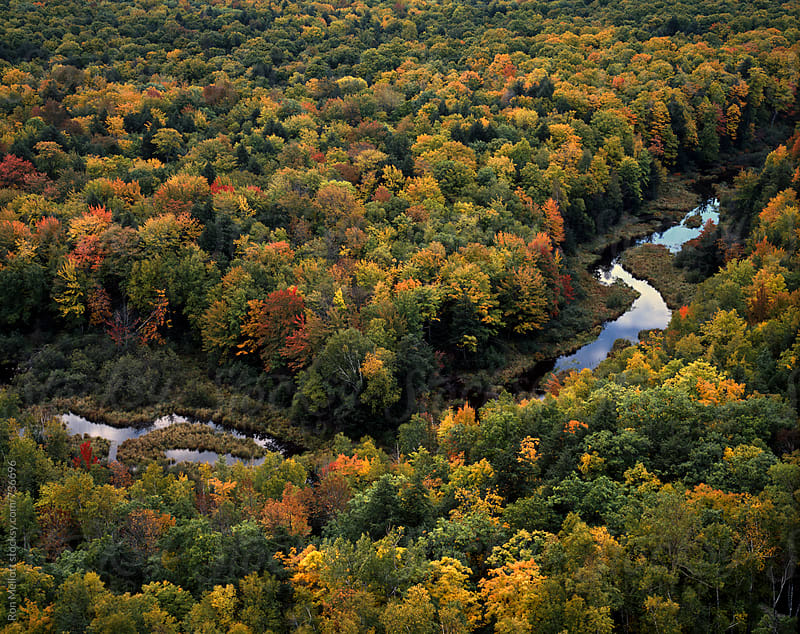 autumn colors carp river upper peninsula michigan by Ron Mellott for Stocksy United