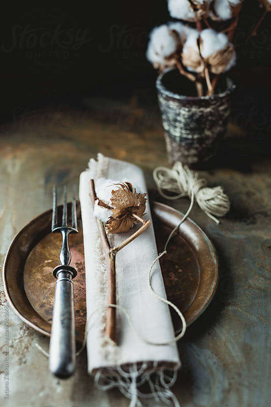 Place setting with cotton by Tatjana Ristanic for Stocksy United