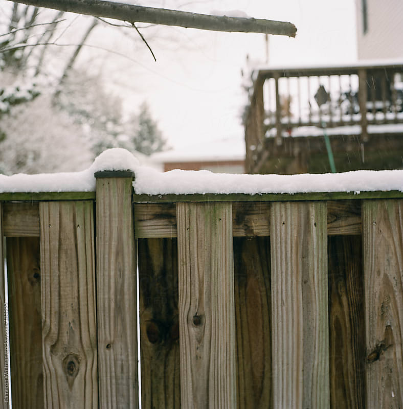 Inches of snow on a wooden fence by Cameron Whitman for Stocksy United