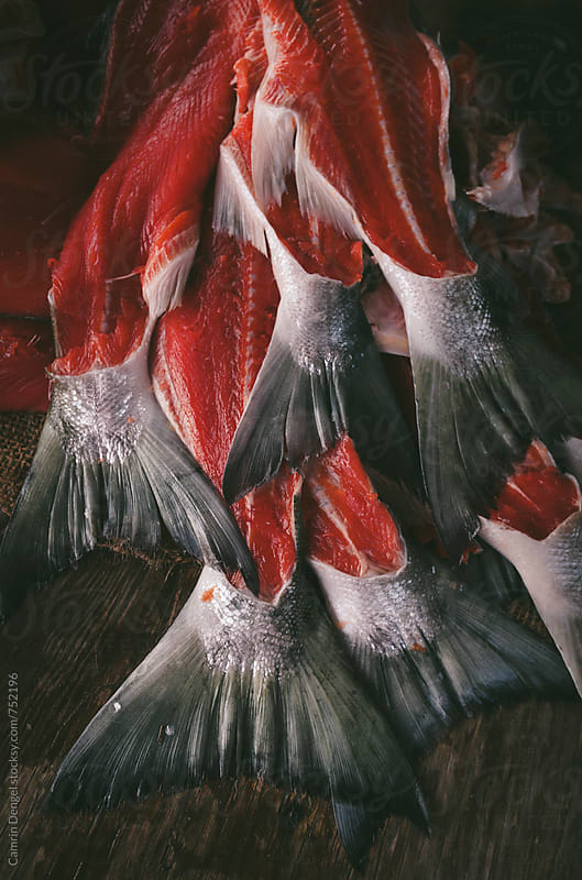Salmon Tails by Camrin Dengel for Stocksy United