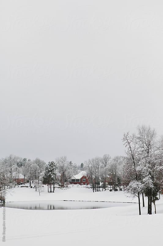 Winter scenery by Ellie Baygulov for Stocksy United
