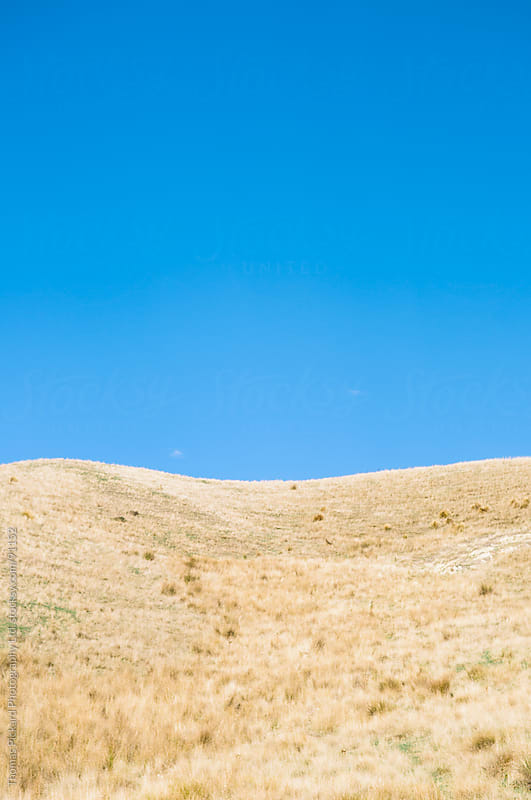Grass covered hill and blue sky, New Zealand. by Thomas Pickard for Stocksy United