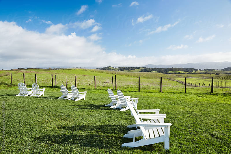 View of Napa Valley Vineyards by Trinette Reed for Stocksy United