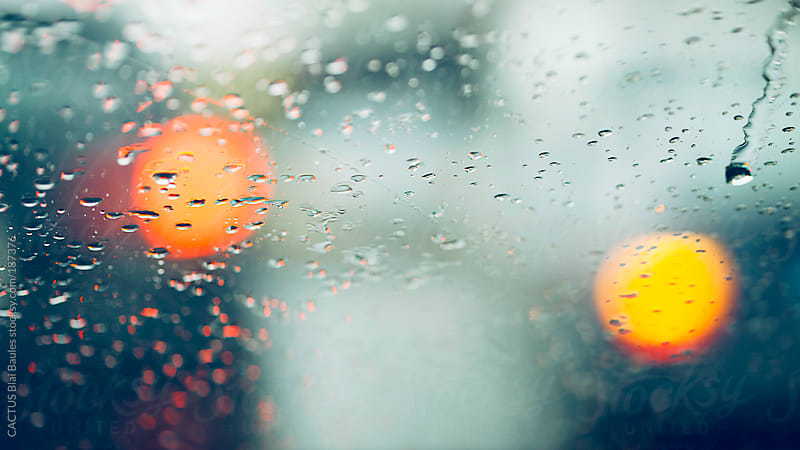 Rainy day by CACTUS Blai Baules for Stocksy United