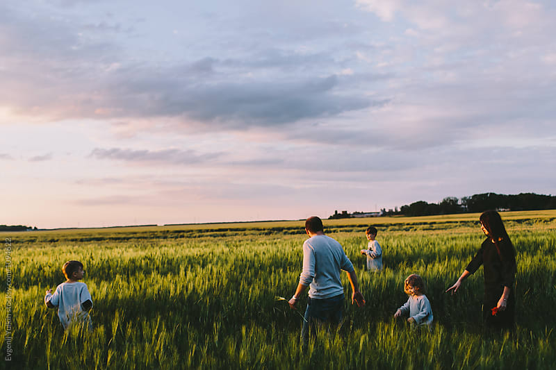 Family with three boys walkin through the barley field  by Evgenij Yulkin for Stocksy United