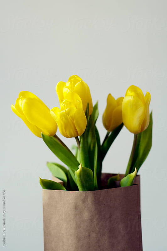 Five yellow tulips by Liubov Burakova for Stocksy United