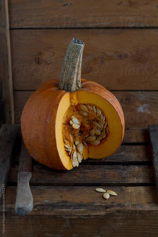Pumpkin  by Noemi Hauser for Stocksy United