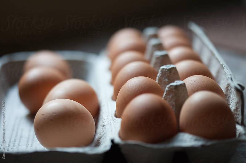 Organic brown eggs in their carton by Carolyn Lagattuta for Stocksy United