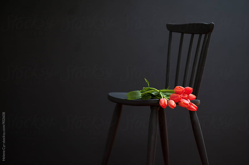 Black chair with tulips by Helene Cyr for Stocksy United