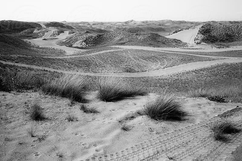 Black and white photo of undulating, rolling landscape of sand dunes. by Lawrence del Mundo for Stocksy United