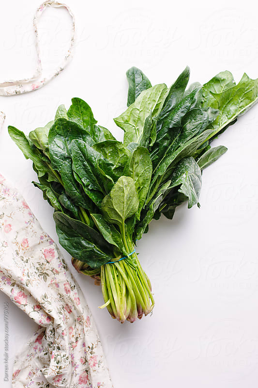 Two bundles of spinach on a white background. by Darren Muir for Stocksy United