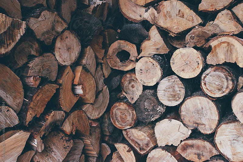 logs by Magida El-Kassis for Stocksy United