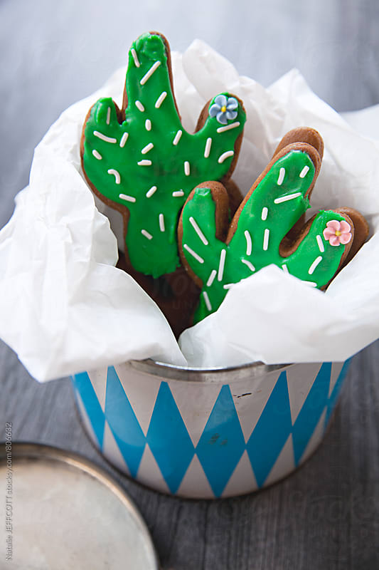 Home made gingerbread cookies in the shape of a cactus in a vintage tin by Natalie JEFFCOTT for Stocksy United