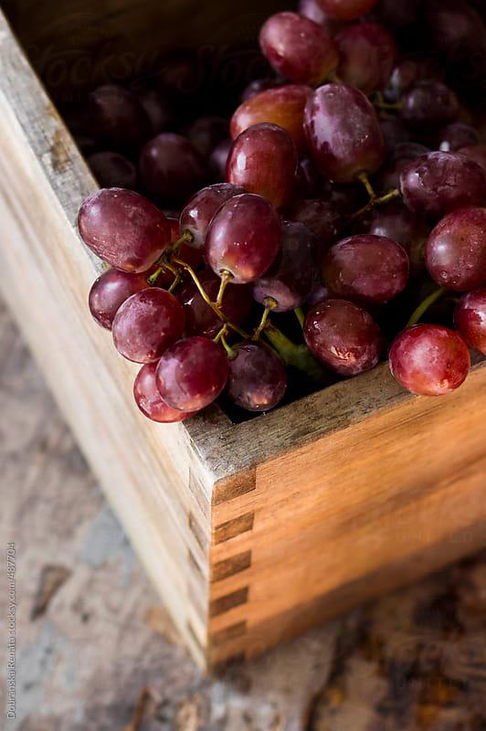 Red grape by Dobránska Renáta for Stocksy United