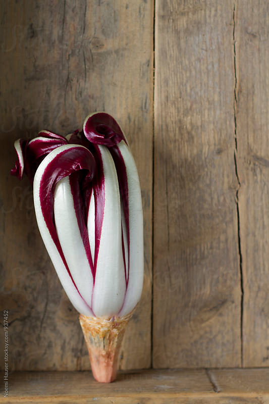 Radicchio Rosso di Treviso Salad by Noemi Hauser for Stocksy United
