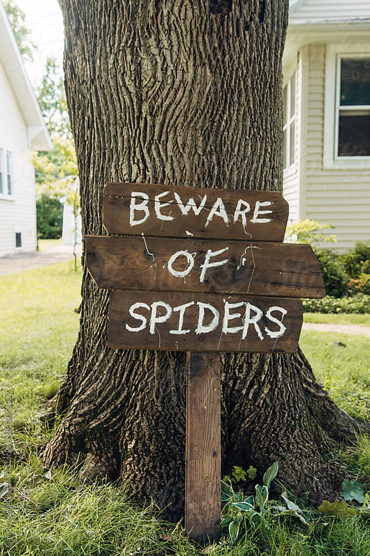 Wooden Beware of Spiders sign by a tree by Gabriel (Gabi) Bucataru for Stocksy United