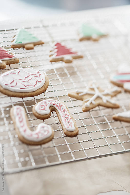 Christmas Themed Sugar Cookies by Cameron Whitman for Stocksy United