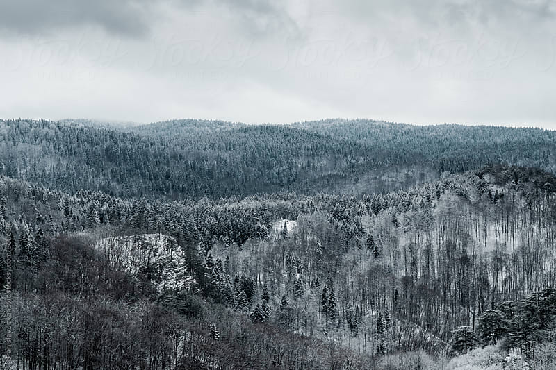Mountain Landscape in the Wintertime by Branislav Jovanovic for Stocksy United