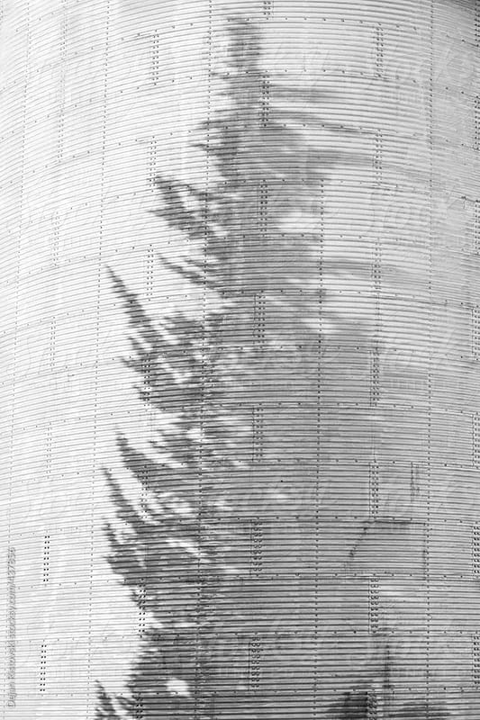 Grain Silo with shadow of tree by Dejan Ristovski for Stocksy United