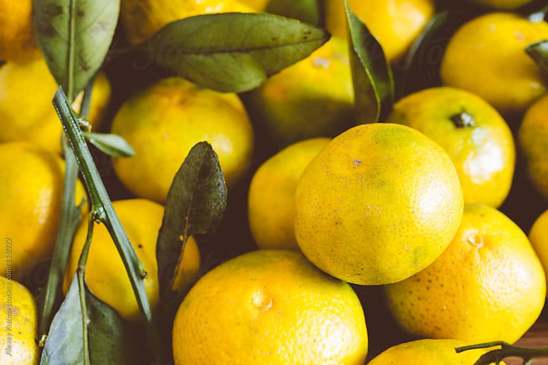 fresh  clementines by Alexey Kuzma for Stocksy United