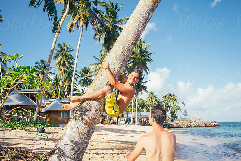 Young happy man climbing palm tree on a tropical island beach by Alejandro Moreno de Carlos for Stocksy United