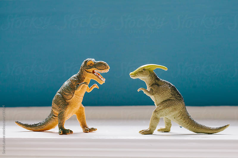 two dinosaurs facing off on a toy shelf by Sarah Lalone for Stocksy United