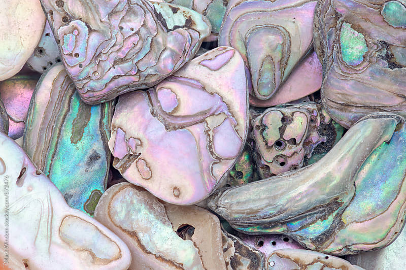 Abalone shell fragments background by Mark Windom for Stocksy United