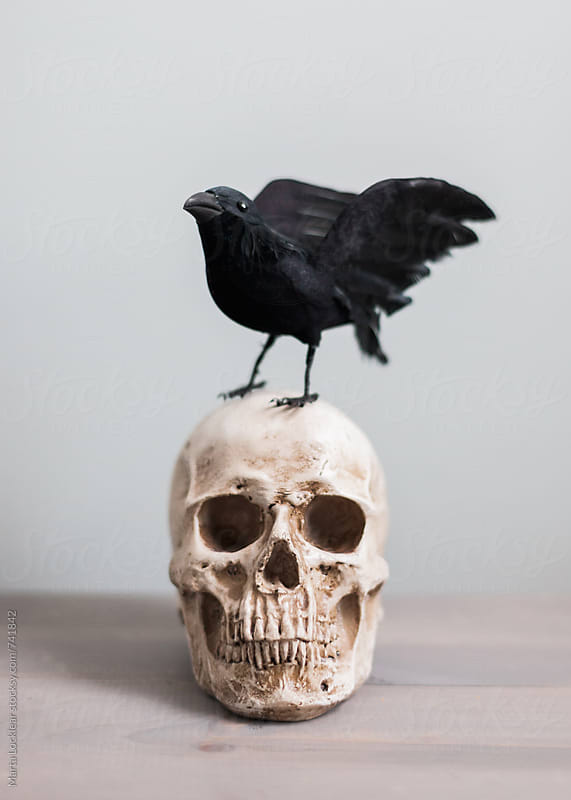 Halloween Decor by Marta Locklear for Stocksy United