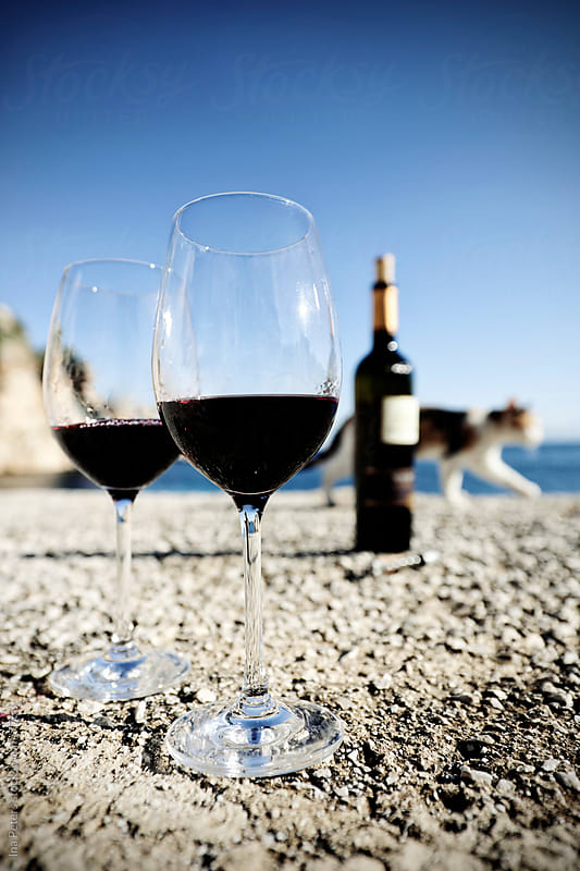 Two glasses of red wine at the sea by Ina Peters for Stocksy United