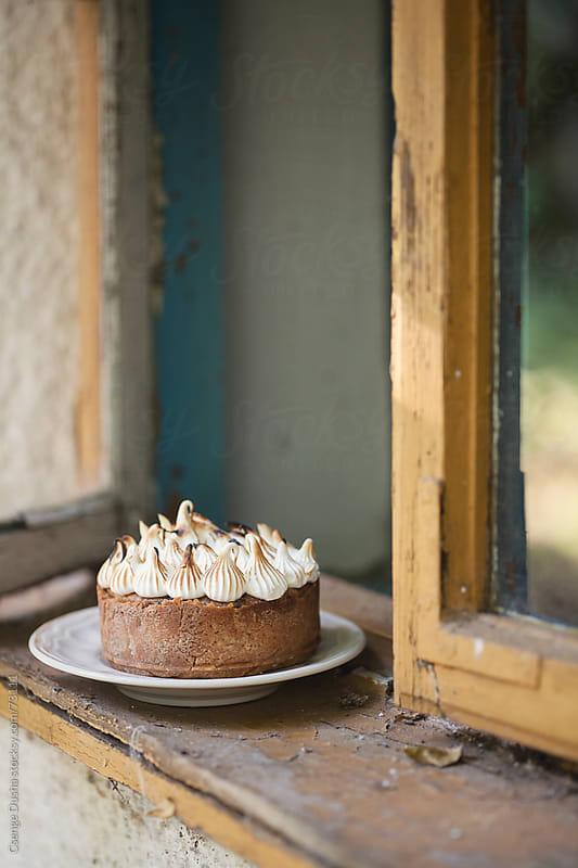 Blueberry-toasted hazelnut cake by Csenge Dusha for Stocksy United