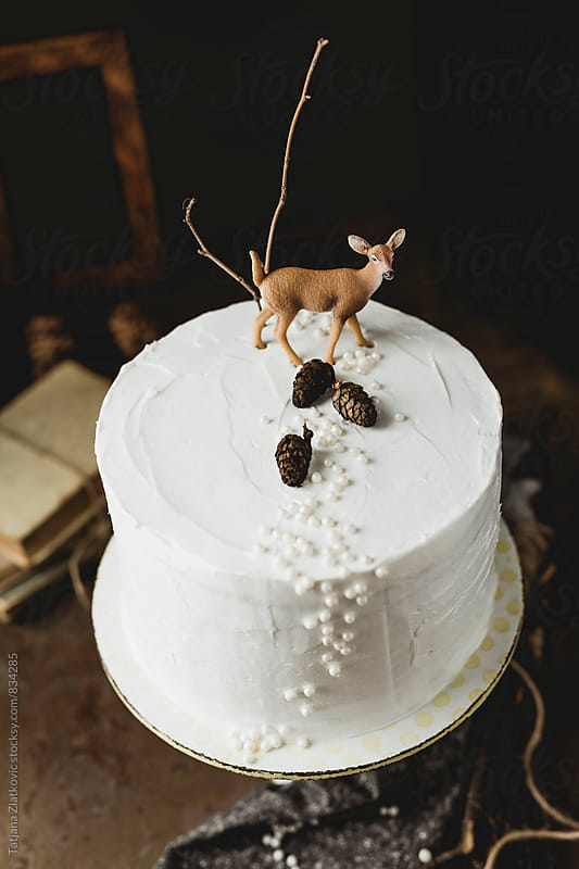 Winter cake by Tatjana Ristanic for Stocksy United