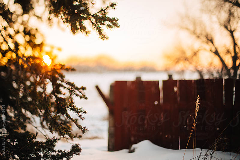 Red fence freelensed in winter by Jessica Byrum for Stocksy United