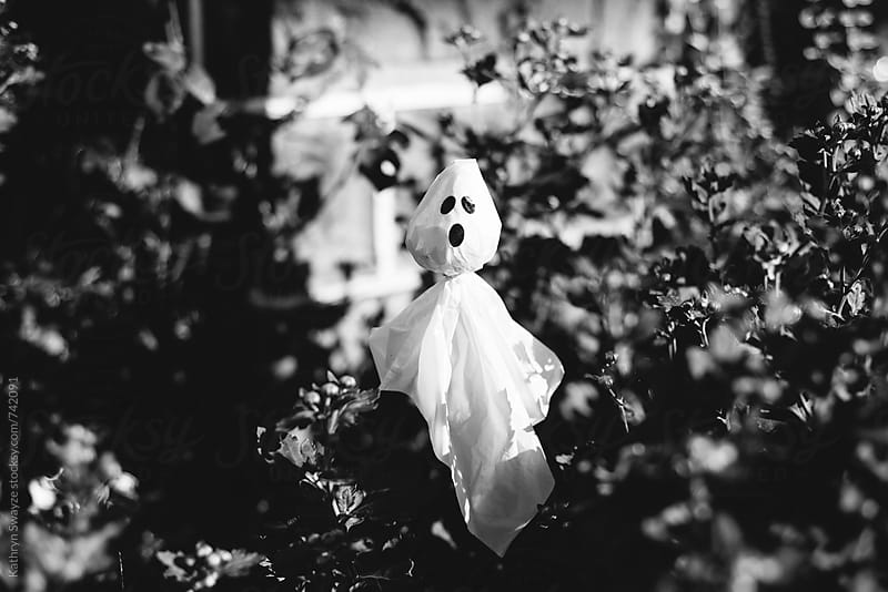 Little plastic ghost sitting among plants by Kathryn Swayze for Stocksy United