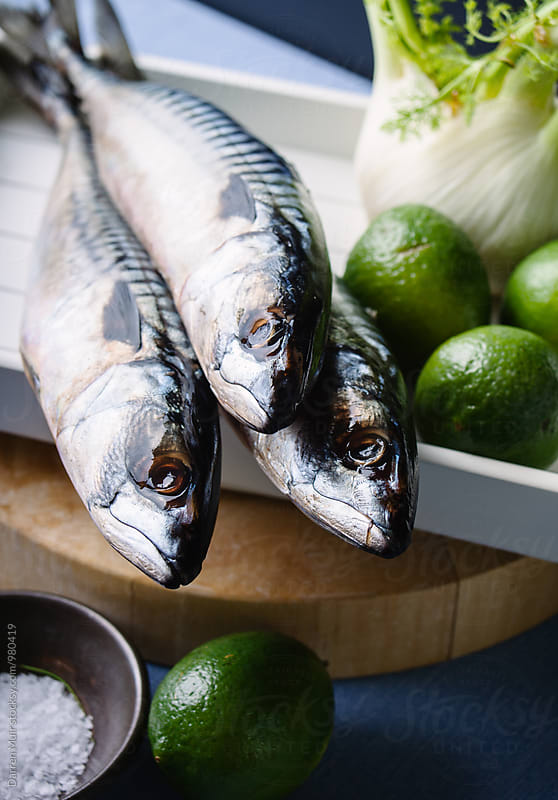 Whole mackerel ready to be prepared for cooking. by Darren Muir for Stocksy United