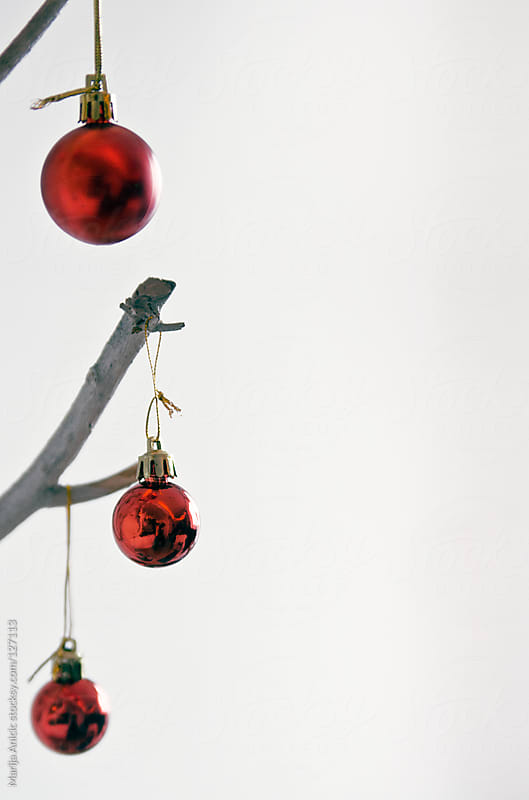 Red decoration balls for Christmas on white branches  by Marija Anicic for Stocksy United