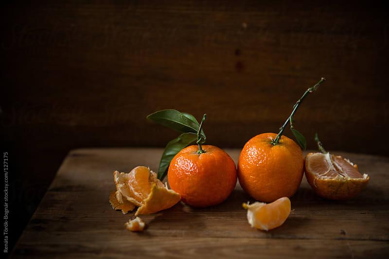 Clementine by Török-Bognár Renáta for Stocksy United