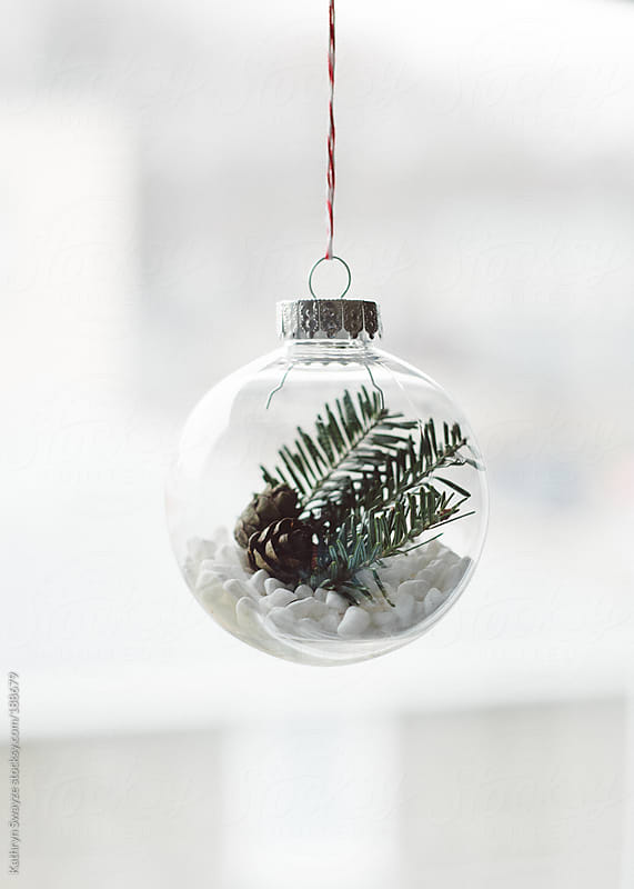 Miniature pine cones and pine sprigs sit inside christmas tree ornament with white pebbles by Kathryn Swayze for Stocksy United