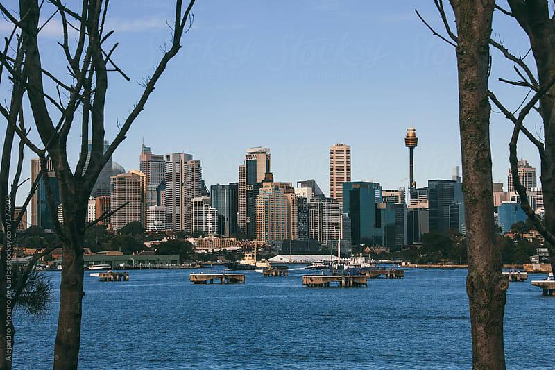 City skyline of Sydney with sea and trees, Australia by Alejandro Moreno de Carlos for Stocksy United