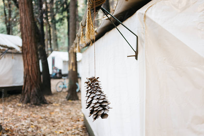 decorative pine cone on outside of temporary tent house by Jesse Morrow for Stocksy United
