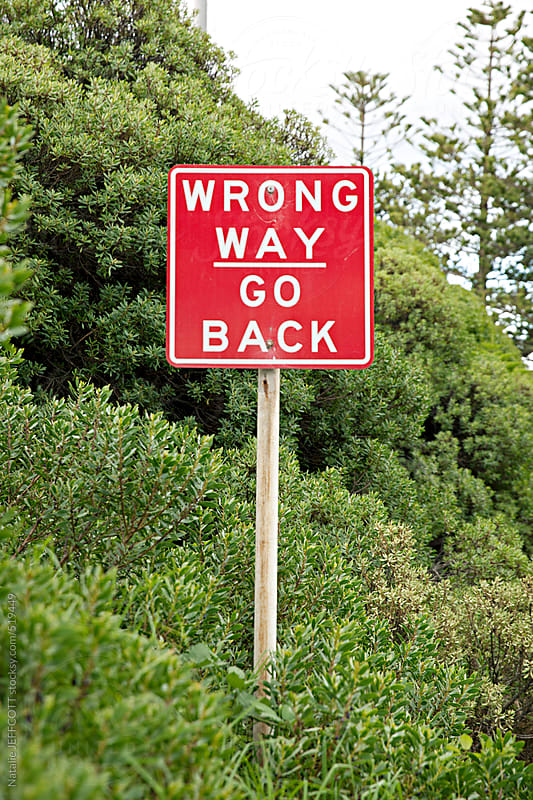 wrong way go back sign in bushes by Natalie JEFFCOTT for Stocksy United