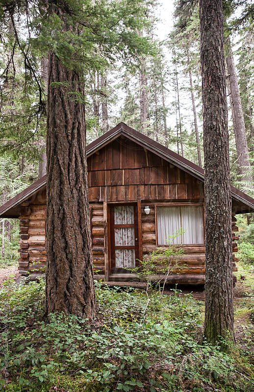 Cabin In The Woods by Carey Haider for Stocksy United