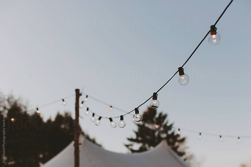 string lights on a farm by Sam Hurd Photography for Stocksy United