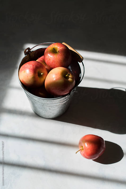 Fresh-Picked Organic Apples on the Kitchen Counter by suzanne clements for Stocksy United