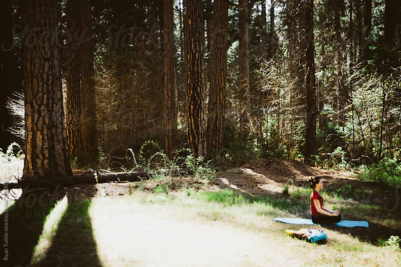 Yosemite by Ryan Tuttle for Stocksy United