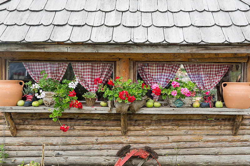 Cute arranged  window in the rural area by Jovo Jovanovic for Stocksy United
