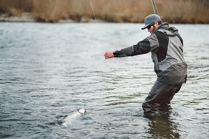 Fly fisherman reeling in a wild winter steelhead in the river by Kate Daigneault for Stocksy United