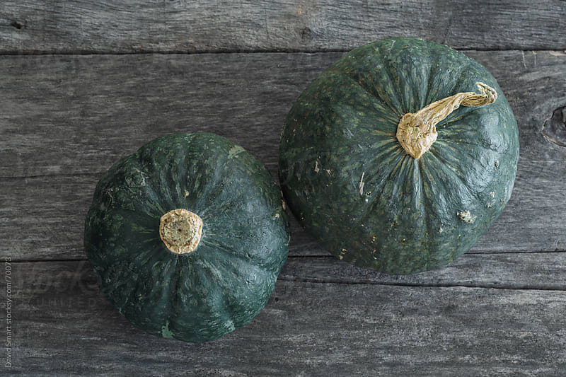 Buttercup Squash on rustic weathered wood Background by David Smart for Stocksy United