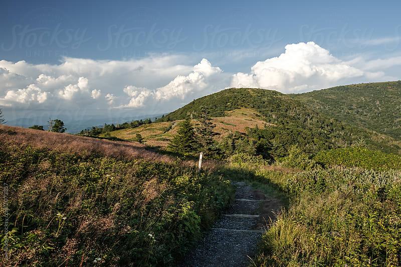 Mountain Trail by Joe Dodd for Stocksy United